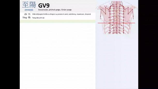 02 - GV9  a GV10