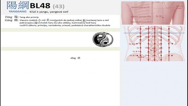 11 - BL48 - BL49