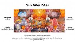 07 - Yin a Yang Wei Mai