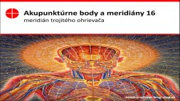 Akupunktúrne body 16