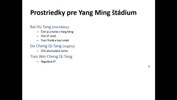 06 - Shao Yang