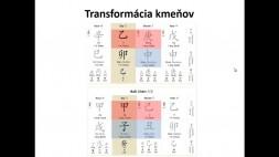 02 - Transformácie kmeňov a vetiev