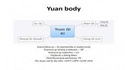 12 - Yuan a Luo body