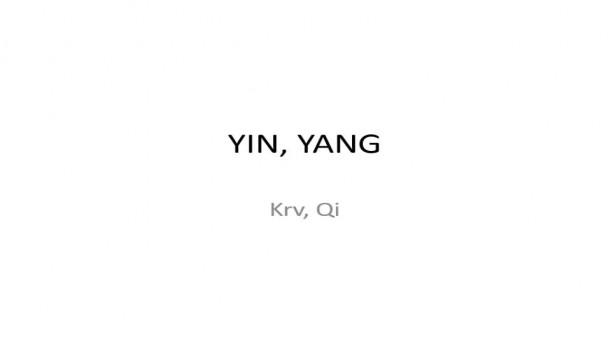 04 - Yin a Yang - diagnostika a terapia
