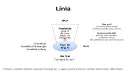 02 - Lýnie, funkcie a štruktúra Ba Mai