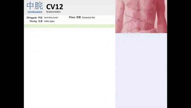 09 - CV12