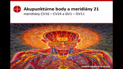 Akupunktúrne body 21