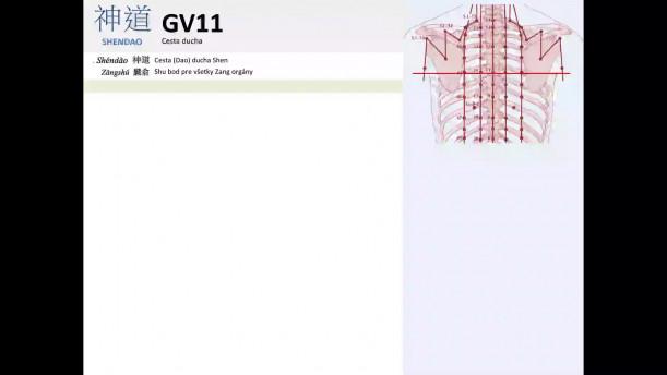 03 - GV11 a GV12