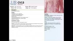 10 - CV13 a CV14 a CV15