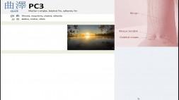 08 - PC3, PC4 a PC5