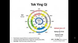 03 - Harmonizacia Ying Qi a Wu Shu XUE