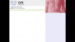 08 - CV9 a CV10 a CV11