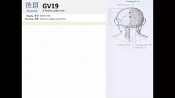 06 - GV19 a GV20