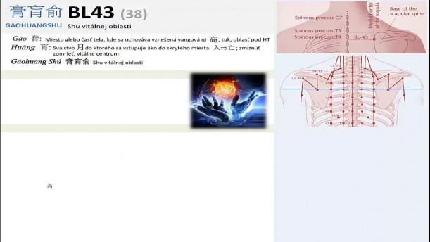 08 - BL43