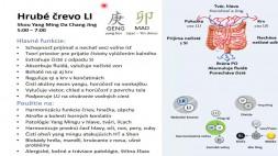 03 - LI - funkcie a vzťahy