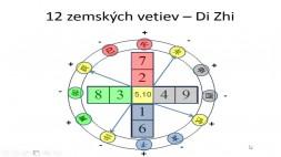 07 - Zemské vetvy