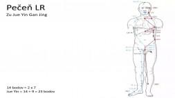 09 - LR a CV