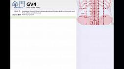 11 - GV4 a GV5 a GV6 a GV7