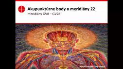 Akupunktúrne body 22