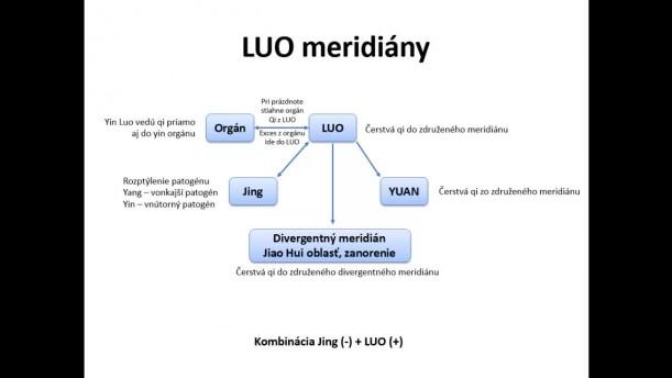 07 - Terapia patogénov s využitím meridiánových máp