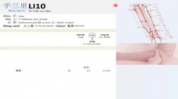 09 - LI10